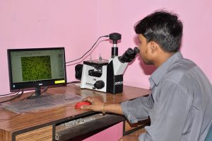 Metal Analysis with microscope and Image Analyzer